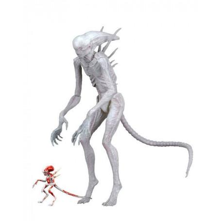 Neca Alien Covenant - New Creature