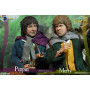 Asmus Toys - Lord of the ring - Le Seigneur des anneaux - Merry Slim