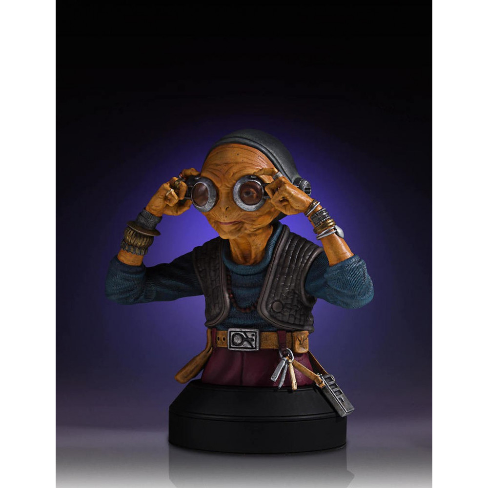 00cc01fc8555 Bust of Maz Kanata the Pirate Queen of the episode VII