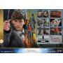 Hot Toys - Les Animaux fantastiques 2 - Movie Masterpiece 1/6 Newt Scamander - Norbert Dragonneau - 30cm