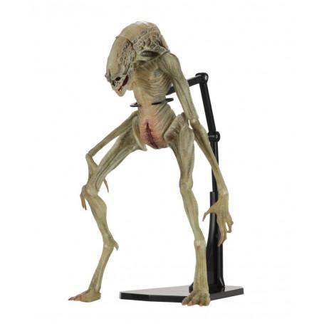 Neca Alien la Resurrection - Deluxe Newborn