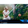 Hot Toys Star Wars IX - L'ascension de Skywalker - pack 2 figurines Movie Masterpiece 1/6 Rey & D-O - 28 cm