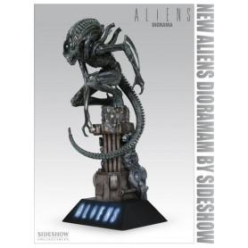Sideshow Alien Warrior - Diorama - Occasion