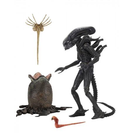 Neca Alien 1979 - Ultimate BIG CHAP