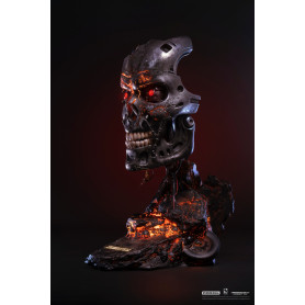 Pure Arts Terminator 2 Endoskeleton Visage 1/1 Battle Damaged