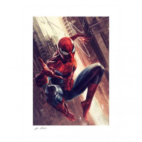 DC Comics impression - Art Print The Amazing Spiderman - 46 x 61 cm - non encadrée