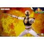 Three 0 - White Ranger - Mighty Morphin Power Rangers FigZero 1/6